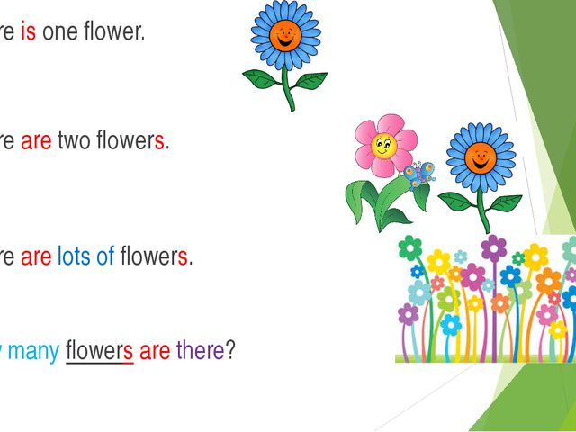 There is one flower. There are two flowers. There are lots of flowers. How ma...