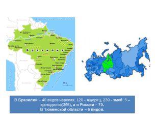 В Бразилии – 40 видов черепах, 120 - ящериц,230 -змей, 5 – крокодилов(395),