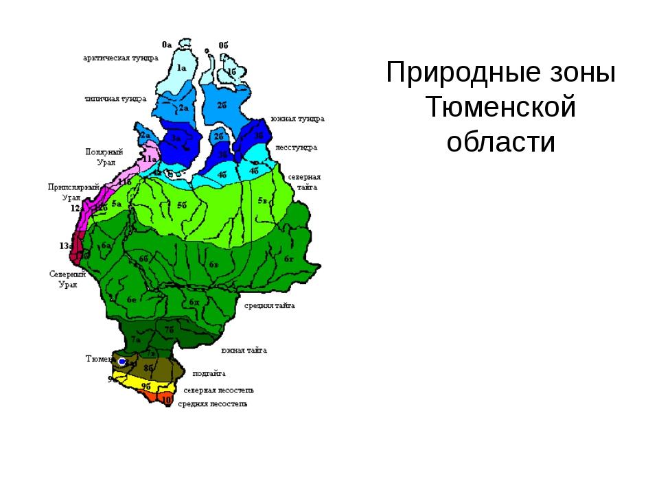 Природные зоны Тюменской области