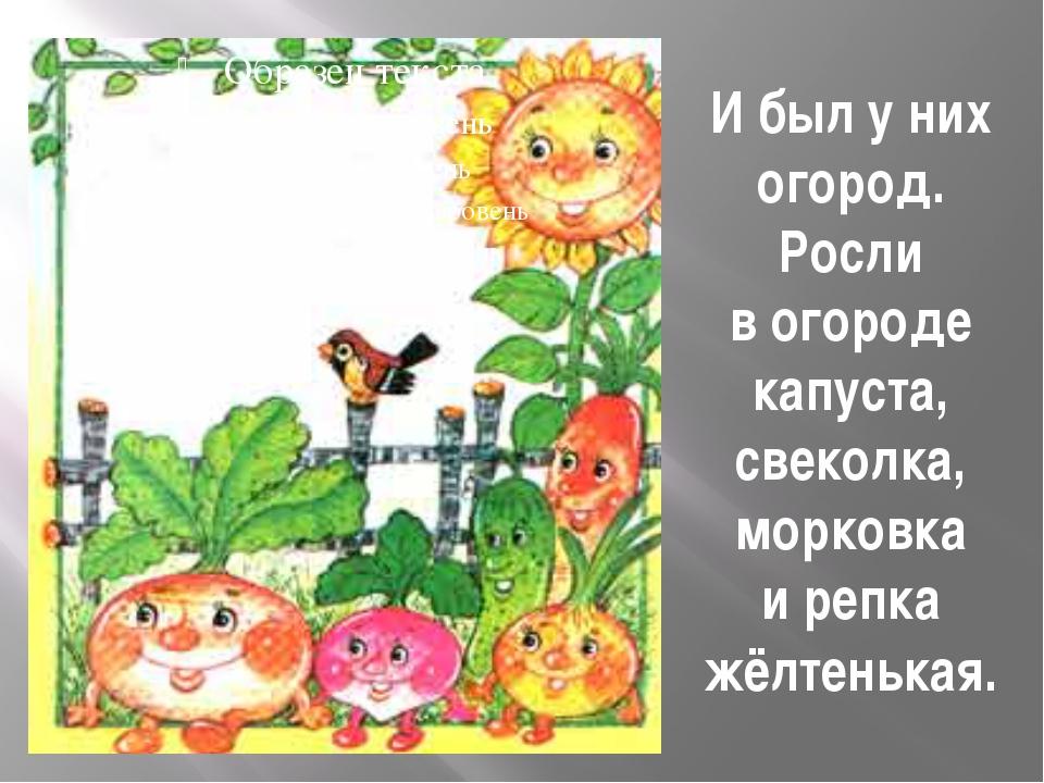 Ибыл уних огород. Росли вогороде капуста, свеколка, морковка ирепка жёлте...