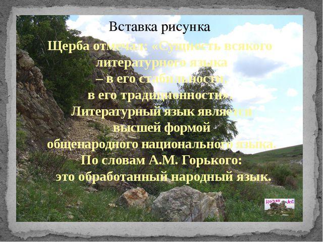 Щерба отмечал: «Сущность всякого литературного языка – в его стабильности, в...