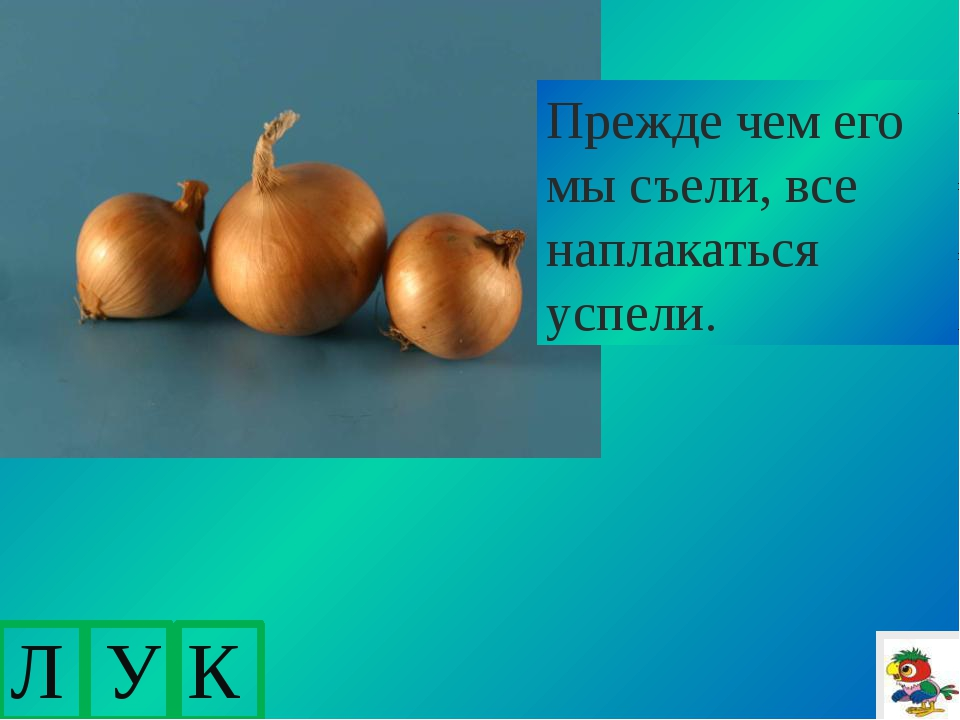 http://fotodryg.ru/clipart/1/4/8.png-копатыч http://audioteka.org/project/in...