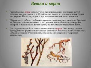 Ветки и корни Разнообразные ветки используются при изготовлении некоторых час