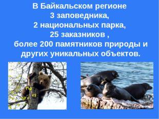 В Байкальском регионе 3 заповедника, 2 национальных парка, 25 заказников , бо