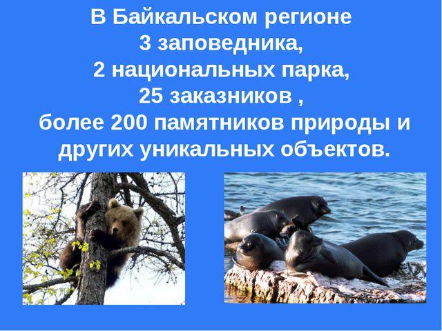 В Байкальском регионе 3 заповедника, 2 национальных парка, 25 заказников , бо...