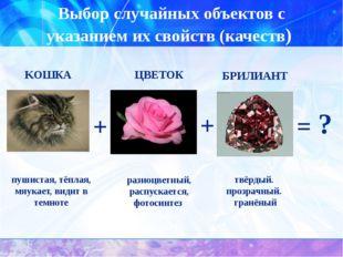 Выбор случайных объектов с указанием их свойств (качеств) пушистая, тёплая, м