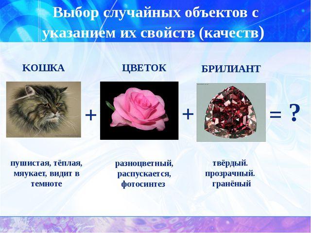 Выбор случайных объектов с указанием их свойств (качеств) пушистая, тёплая, м...