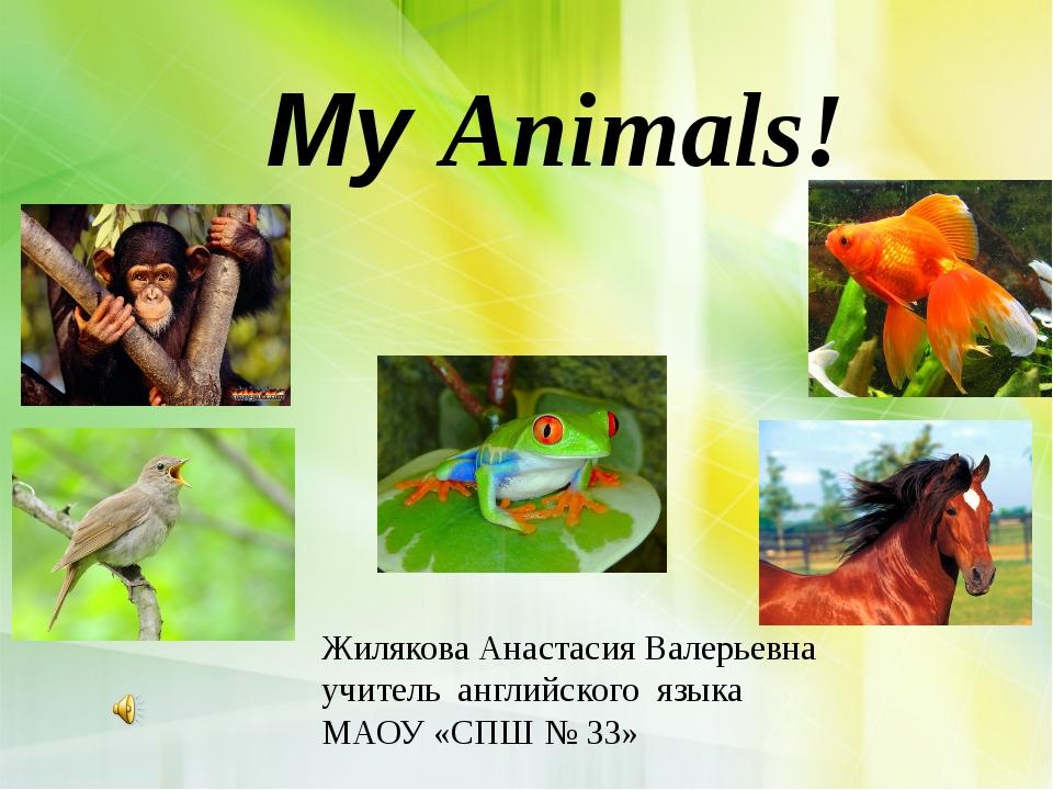 My Animals! Жилякова Анастасия Валерьевна учитель английского языка МАОУ «СП...