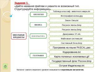 ШКОЛЬНЫЕ ПРЕДМЕТЫ Таблица классиф. животного мира.txt Фотография волка.jpg З