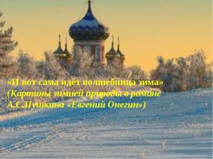 «И вот сама идёт волшебница зима» (Картины зимней природы в романе А.С.Пушкин