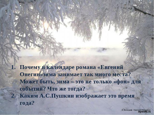 Почему в календаре романа «Евгений Онегин»зима занимает так много места? Може...