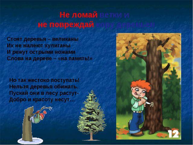 Не ломай ветки и не повреждай кору деревьев Стоят деревья – великаны Их не жа...