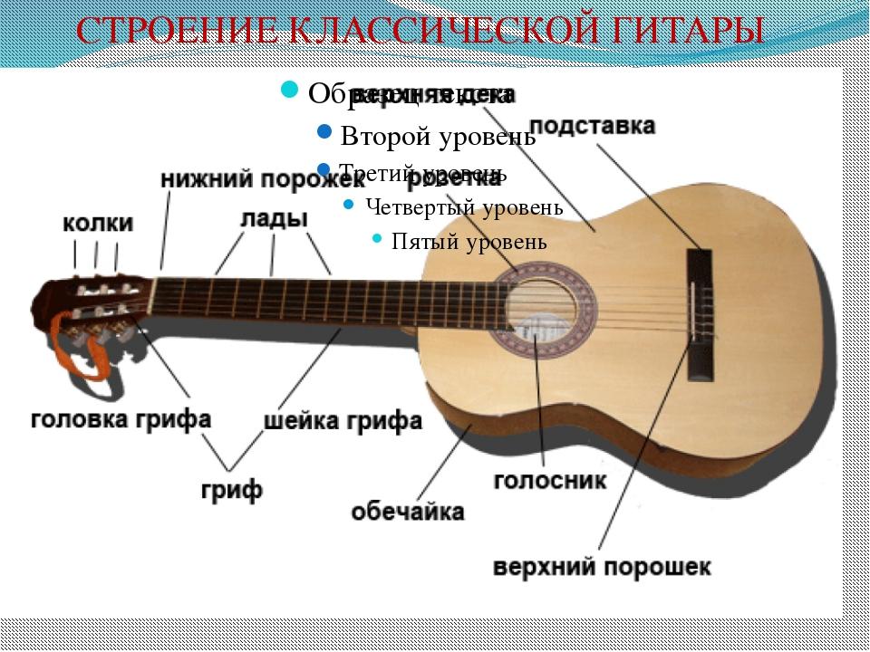 этот схема строения гитары это загородный