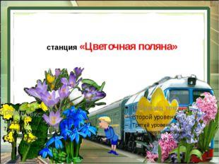 станция «Цветочная поляна»