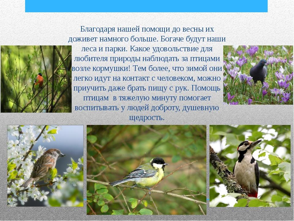 Благодаря нашей помощи до весны их доживет намного больше. Богаче будут наши...