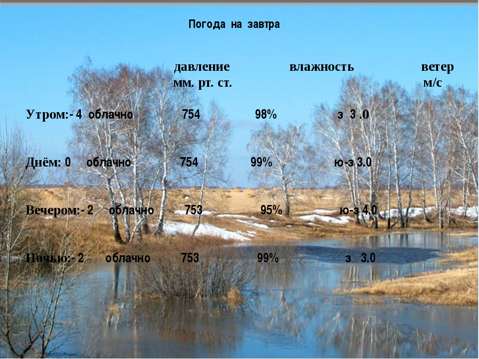 Погода на завтра давление влажность ветер мм. рт. ст. м/с Утром:- 4 облачно...