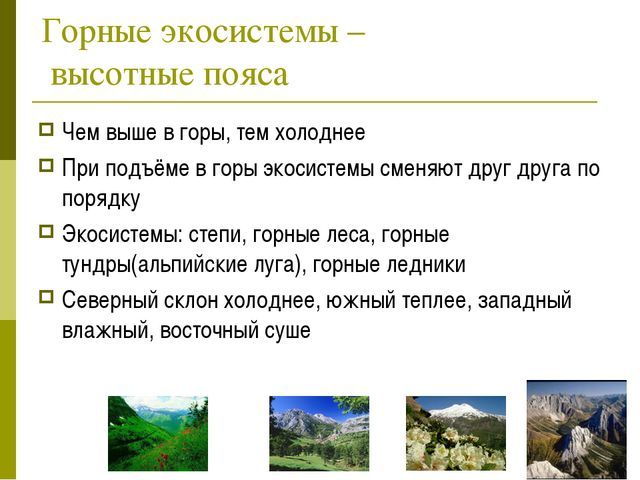 Горные экосистемы – высотные пояса Чем выше в горы, тем холоднее При подъёме...