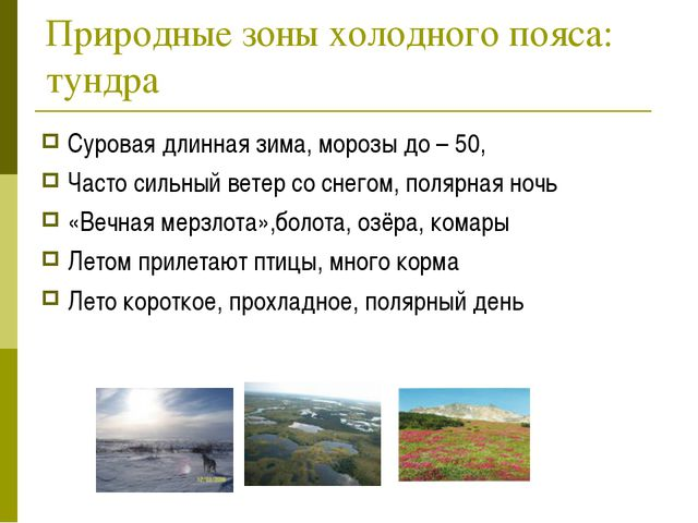 Природные зоны холодного пояса: тундра Суровая длинная зима, морозы до – 50,...