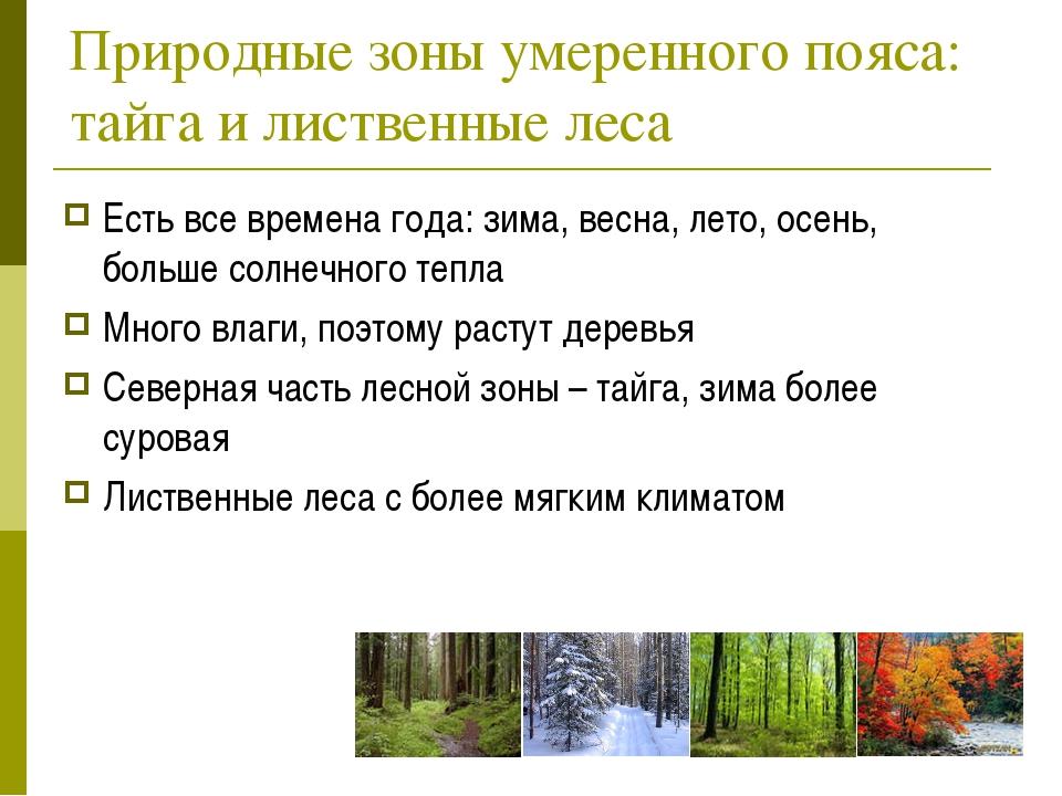 Природные зоны умеренного пояса: тайга и лиственные леса Есть все времена год...