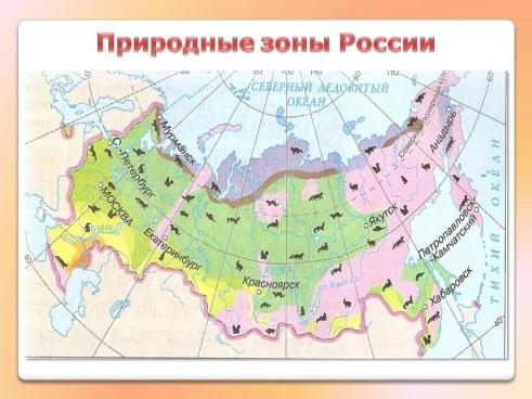 Природные зоны России - Картинка 16282/4
