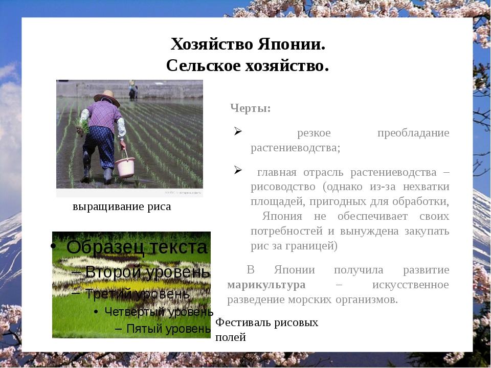 Хозяйство Японии. Сельское хозяйство. Черты: резкое преобладание растениеводс...