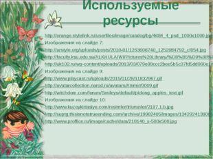 http://orange.stylelink.ru/userfiles/image/catalog/bg/4684_4_psd_1000x1000.jp