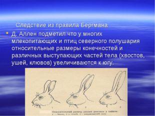 Следствие из правила Бергмана Д. Аллен подметил что у многих млекопитающих и