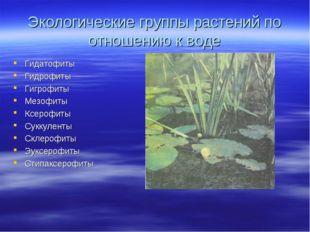Экологические группы растений по отношению к воде Гидатофиты Гидрофиты Гигроф