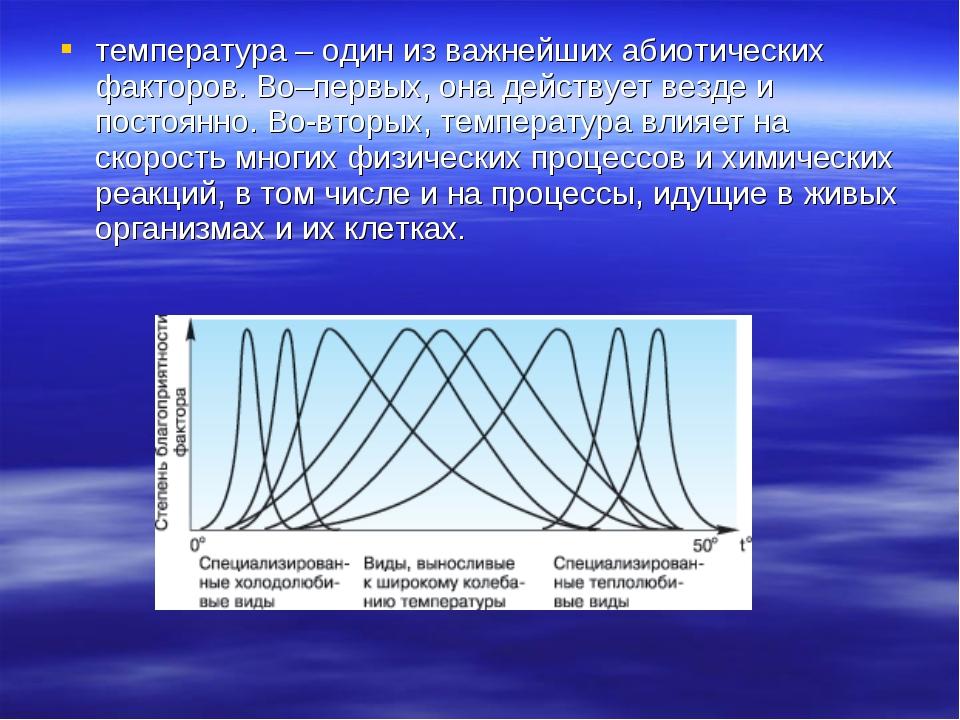 температура – один из важнейших абиотических факторов. Во–первых, она действу...