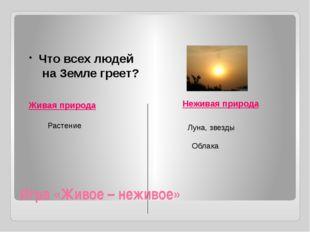 Игра «Живое – неживое» Живая природа Неживая природа Что всех людей на Земле