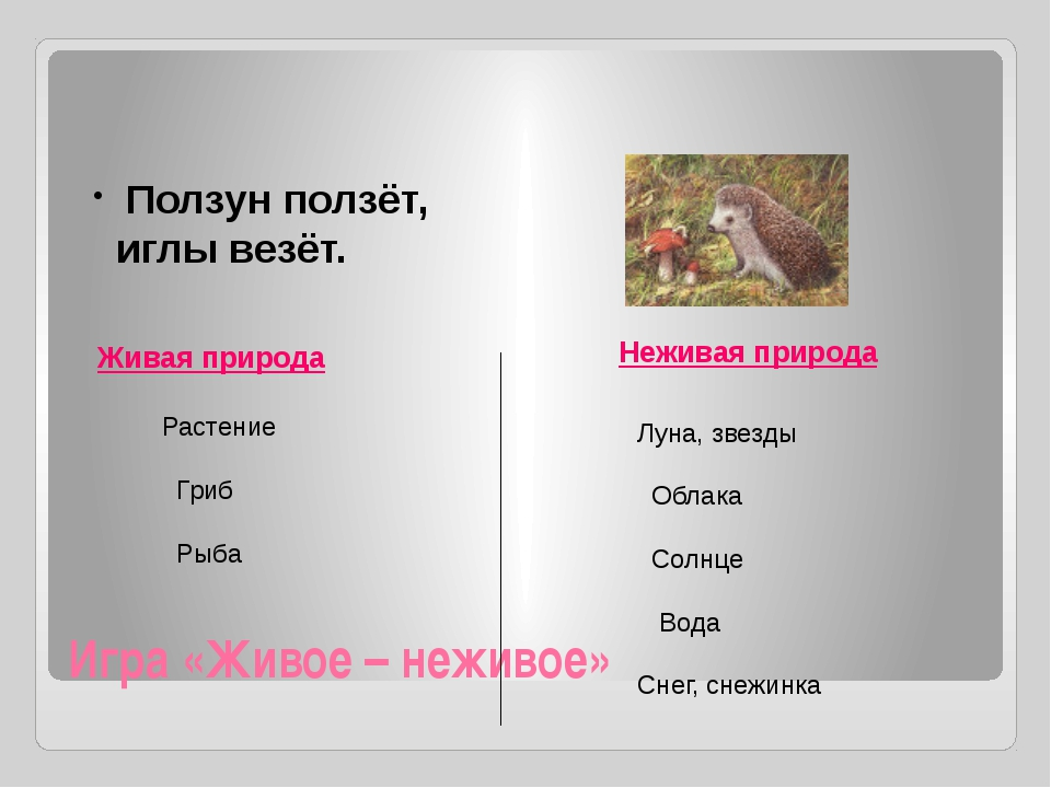 Игра «Живое – неживое» Живая природа Неживая природа Ползун ползёт, иглы везё...