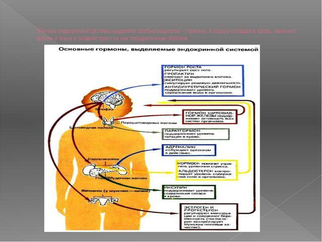 Железы эндокринной системы выделяют особые вещества – гормоны. Которые попада...