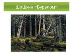 ШиШкин «Бурелом»