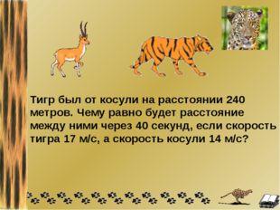 Тигр был от косули на расстоянии 240 метров. Чему равно будет расстояние межд
