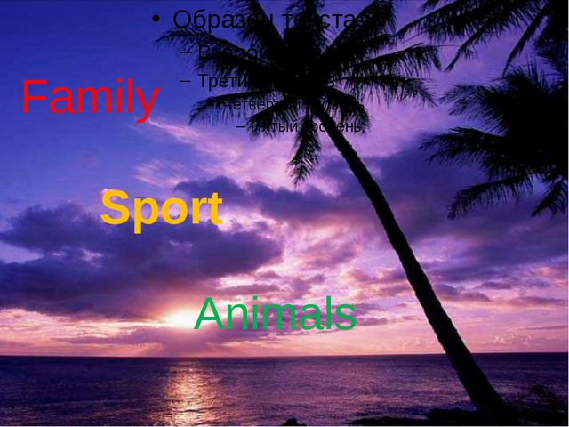 Animals Family Sport