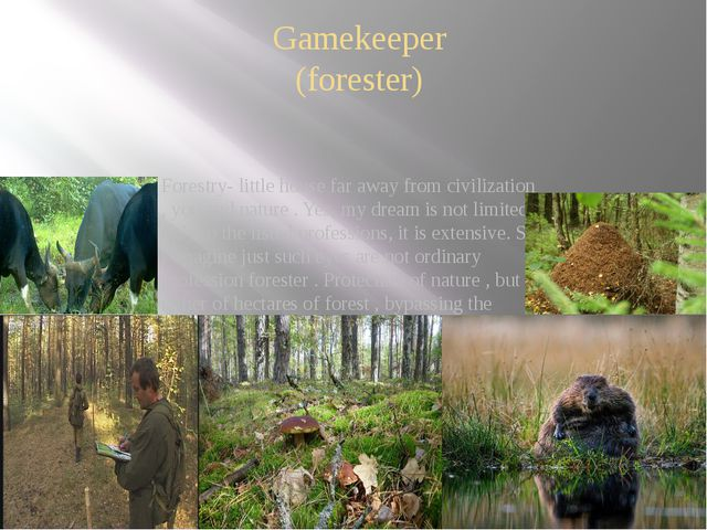 Gamekeeper (forester) Forestry- little house far away from civilization , you...