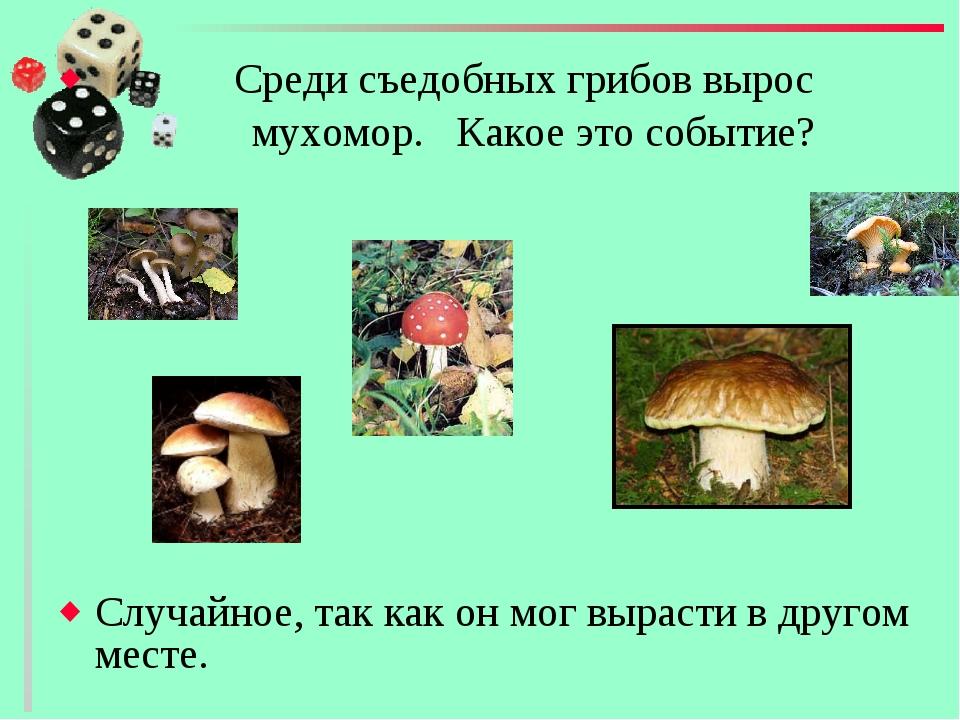 Среди съедобных грибов вырос мухомор. Какое это событие? Случайное, так как...
