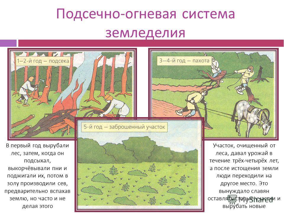 Подсечное земледелие в картинках