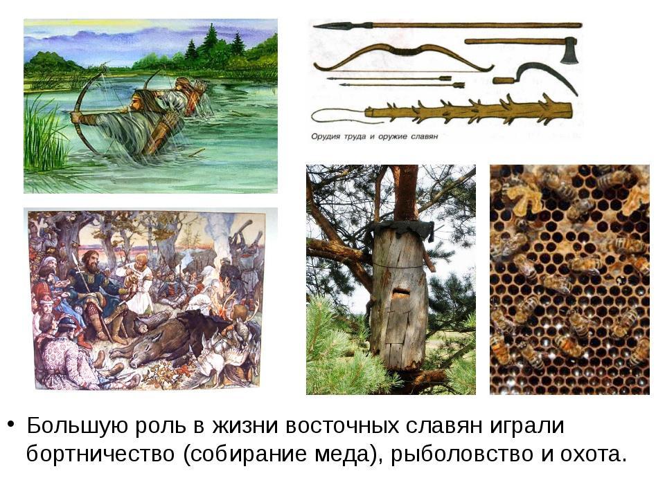 Большую роль в жизни восточных славян играли бортничество (собирание меда), р...