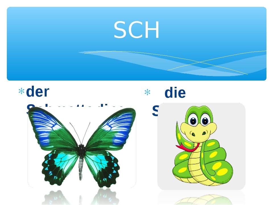 SCH der Schmetterling die Schlange
