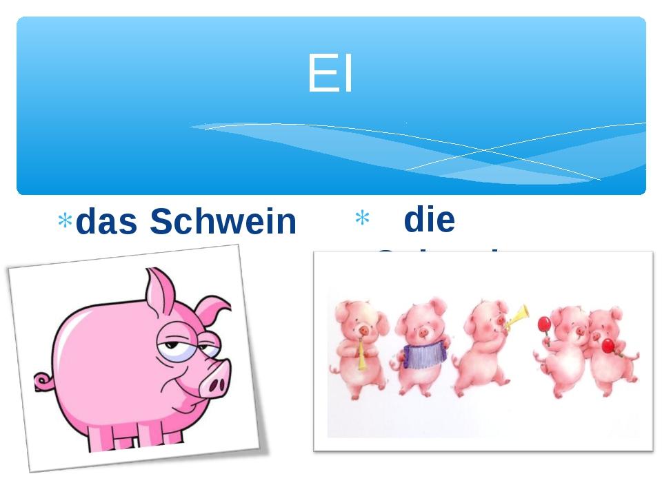 EI das Schwein die Schweine