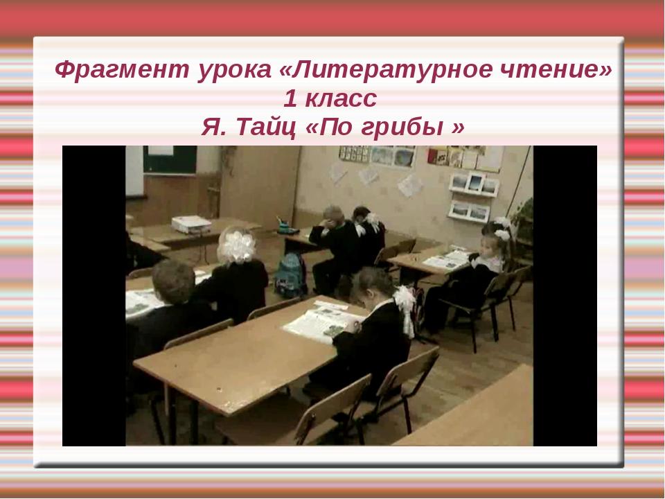 Фрагмент урока «Литературное чтение» 1 класс Я. Тайц «По грибы »