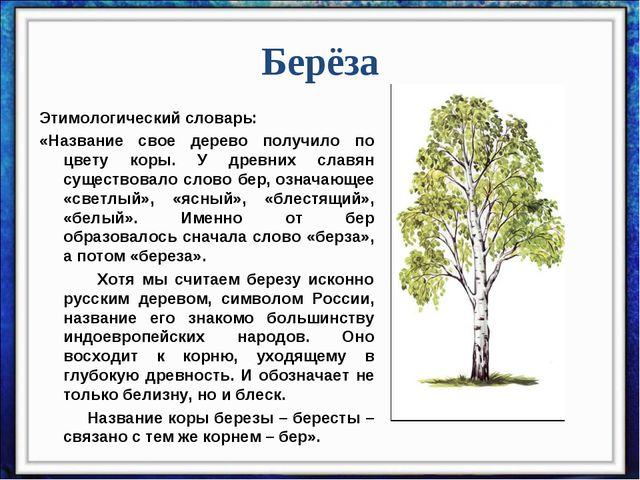 Берёза Этимологический словарь: «Название свое дерево получило по цвету коры....
