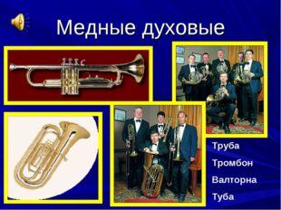 Медные духовые Труба Тромбон Валторна Туба