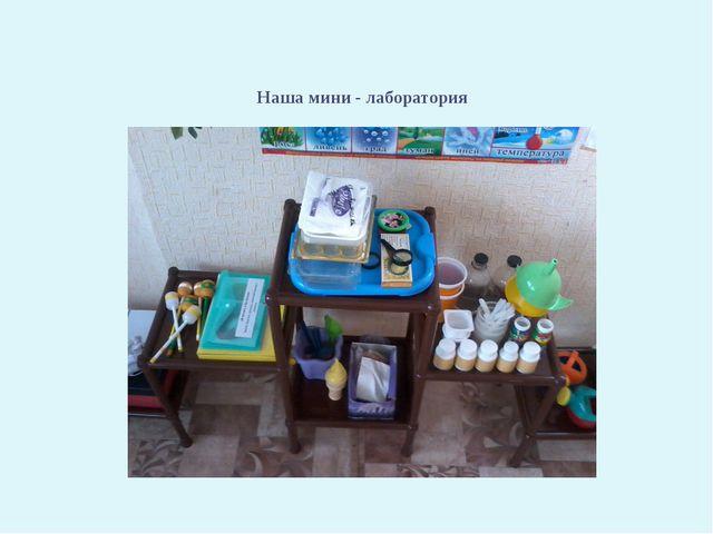 Наша мини - лаборатория