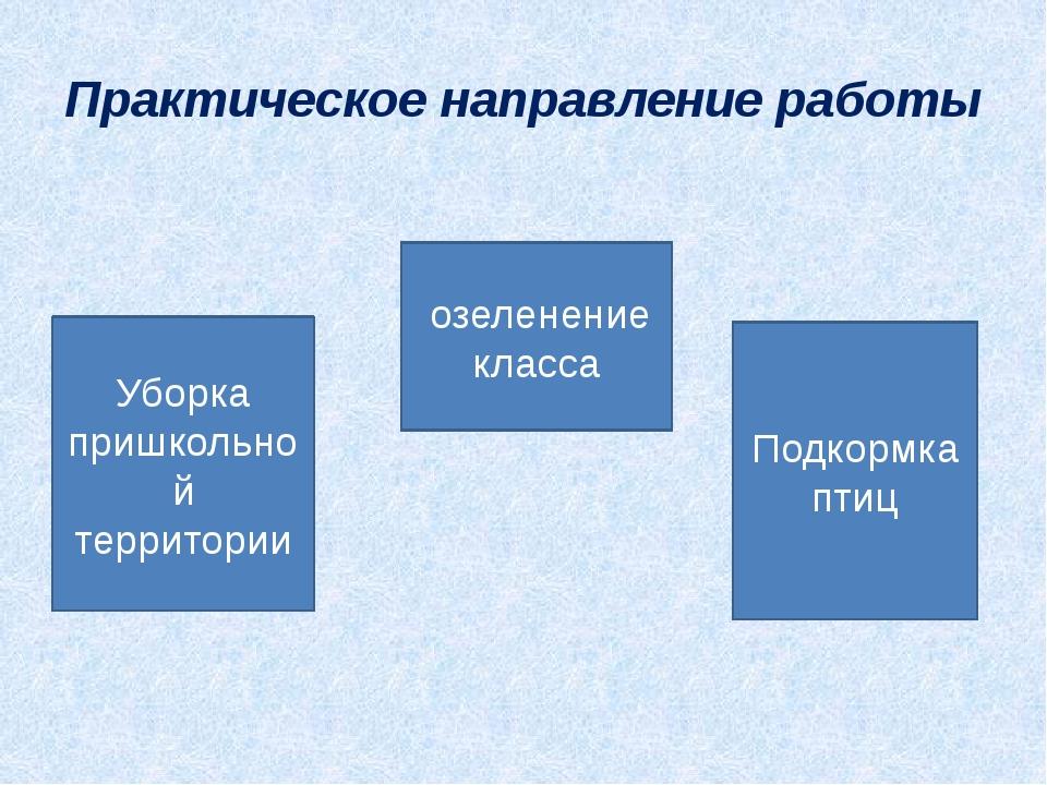 Практическое направление работы Уборка пришкольной территории озеленение клас...