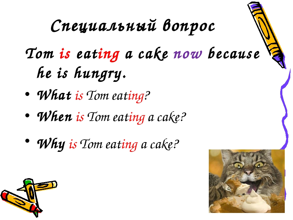 Специальный вопрос Tom is eating a cake now because he is hungry. What is Tom...