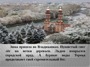 Зима пришла во Владикавказ. Пушистый снег лёг на ветки деревьев. Льдом покр