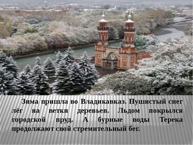 Зима пришла во Владикавказ. Пушистый снег лёг на ветки деревьев. Льдом покр...