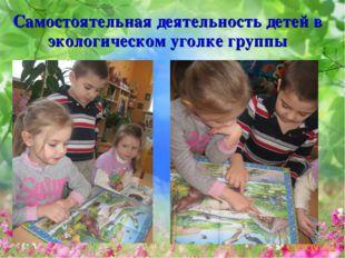 Самостоятельная деятельность детей в экологическом уголке группы